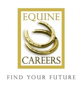 Equine Careers