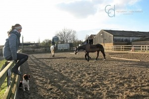 Blogstars - Wiola Grabowska from Aspire Equestrian talks about blogs and blogging for business | Rhea Freeman