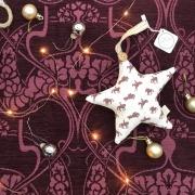 robin roadnight hanging star