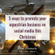 Five ways to promote your equestrian business on social media this Christmas